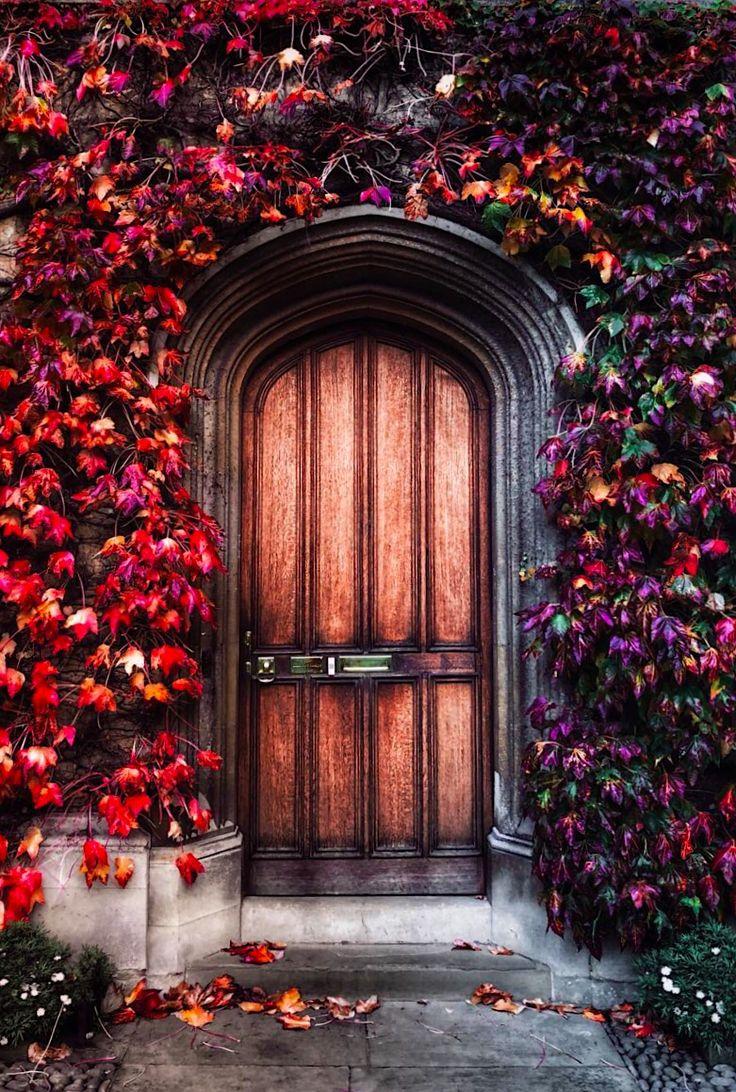 Cambridge, Cambridgeshire, England