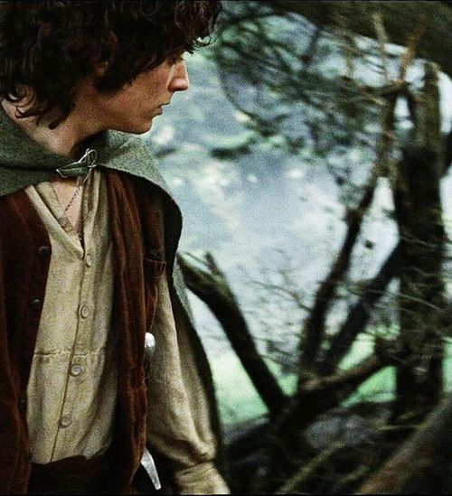 #lotr #frodo