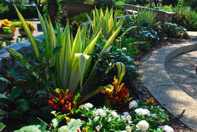 55 Best Images About Norfolk Botanical Gardens On Pinterest