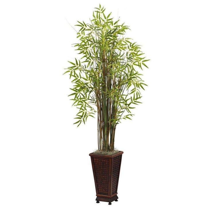 The 25+ best Bamboo grass ideas on Pinterest Potted bamboo, Back - bambus garten design