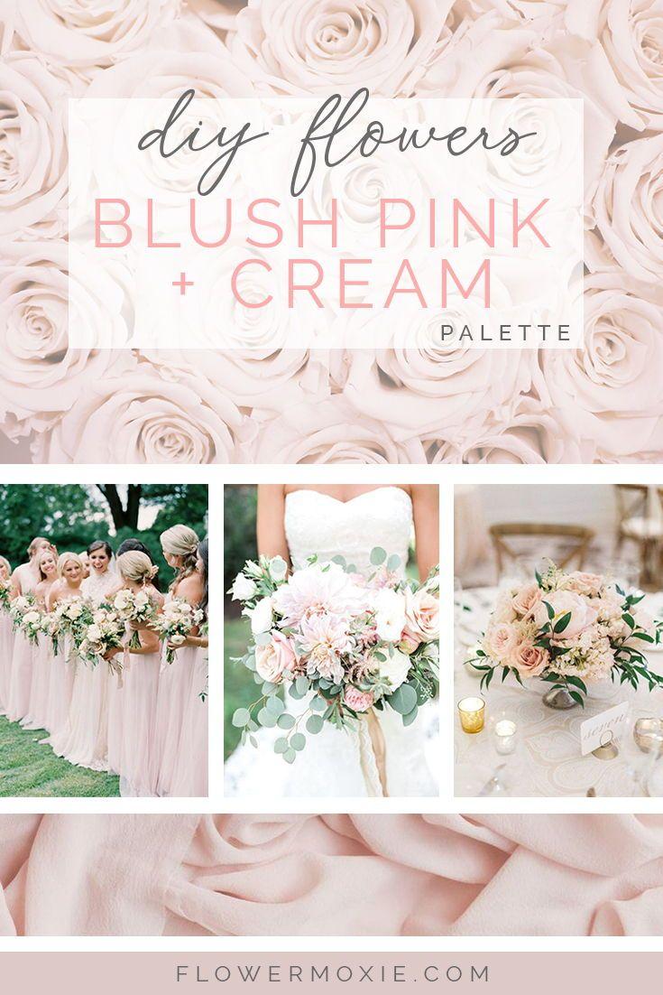 Pin On Creams Blushes Pinks