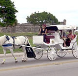 Carriage Ride in St. Augustine