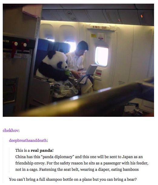 Awww I wished I can seat next to a panda