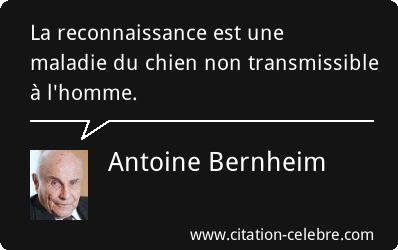 Antoine Bernheim : La reconnaissance est une maladie du chien non transmissible à l'homme.