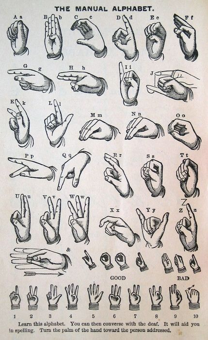 Manual alphabet infographicalness pinterest sprachen for Schattentheater selber machen