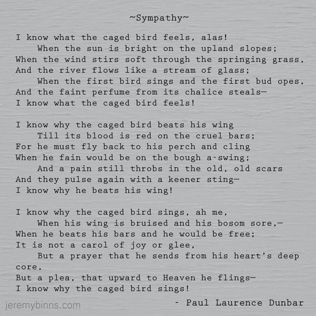 essay on the poem sympathy Essay caged bird by: maya angelou sympathy by: paul laurence dunbar introduction freedom is never voluntarily given by the oppressor, it must be demanded by the.