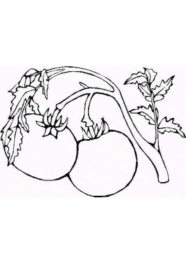 Coloriage Fruits Les Belles Cerises