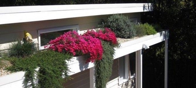 Adding Value to Your Residence with a Rooftop Garden. #roofgarden #newhomes #designbuild