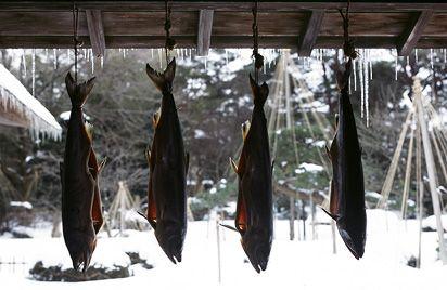 新潟村上の特産品 「塩引鮭(塩引き鮭)」:鮭(塩引鮭・塩引き鮭)の通販は永徳 鮭乃蔵