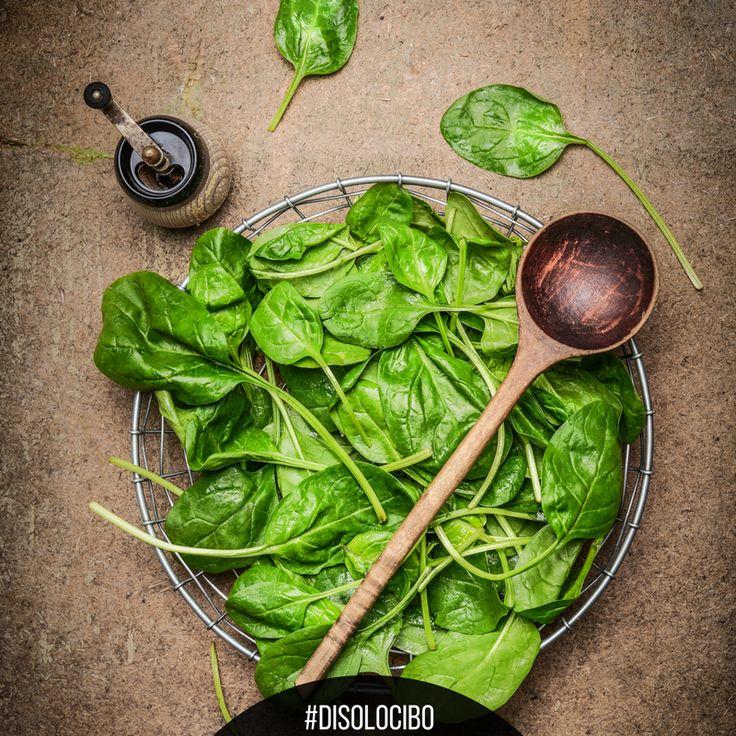 La verdura fresca si può conservare nel congelatore, anche se non avrà lo stesso aspetto, conserverà meglio tutte le proprietà nutritive. #disolocibo
