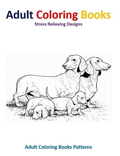 adult dogs sleeping patterns