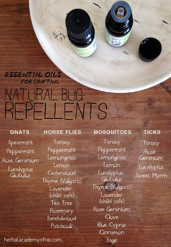Natural bug repellents using essential oils