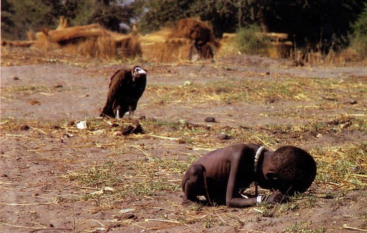 VULTURE WITH MORE TIME TO LIVE THAN HIS PREY. WHAT IS WRONG WITH THIS?    Kevin Carter captured the devastating famine in Sudan with a photograph of a toddler crawling to a UN feeding center while a vulture stalks her as prey. Carter won a Pulitzer Prize for his work but received harsh criticism for both the photograph and for not helping the child. A year later, gripped by the devastation and depression he had seen, Carter committed suicide