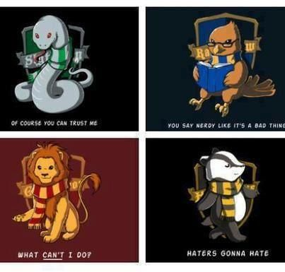 Love Hufflepuff and Ravenclaw ones.