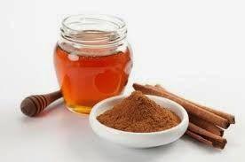 natural rooting hormone cinnamon and honey http://gardenandfarm.blogspot.com