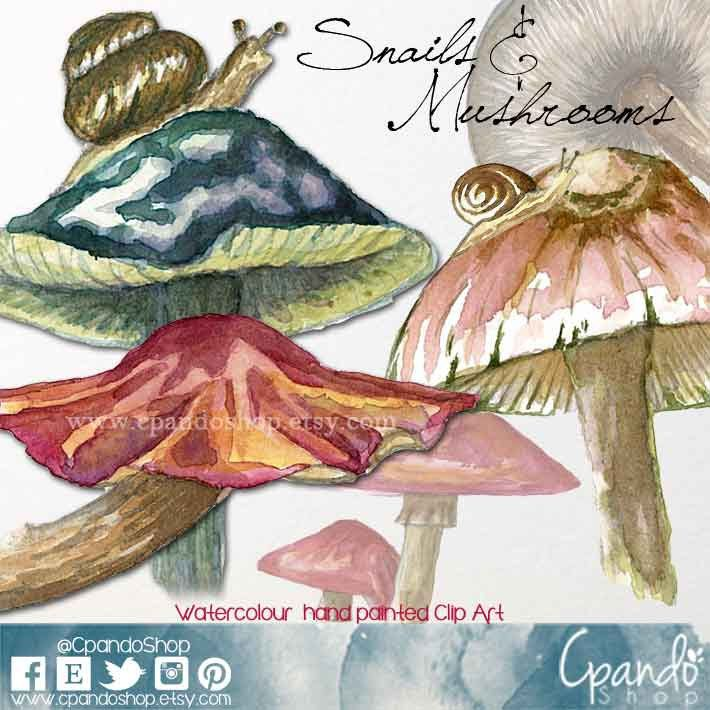 Mushrooms clipart fungus clipart woods clilpart snail clipart watercolor snail watercolor nature watercolor camping invite animals clipart