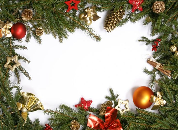 Vánoční ozdoby, vánoční strom, větve, kužely, bobule, skořice vektor