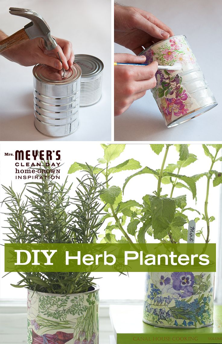 Use tin cans to make a happy home for fresh herbs with this easy DIY from our friends at Design*Sponge. Pair planted rosemary with Mrs. Meyer's Clean Day Rosemary Dish Soap for a great gift.