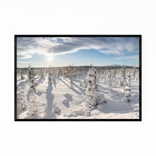Noir Gallery Lapland Finland Winter Trees Framed Art Print (White – 16 x 20)