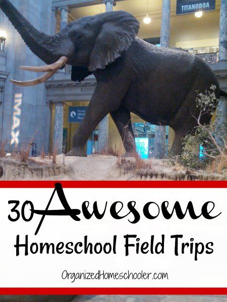 Check out these 30 awesome homeschool field trip ideas! #fieldtrip #homeschool