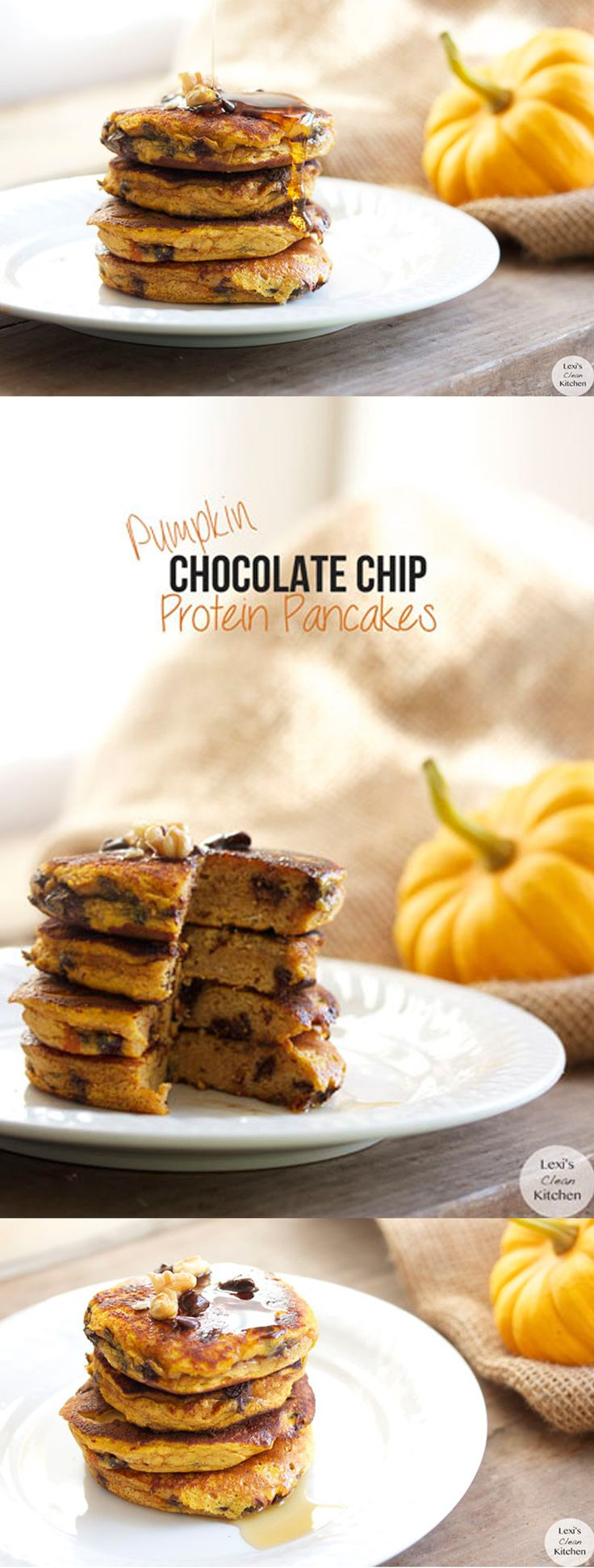 Chocolate Chip Pumpkin Protein Pancakes #glutenfree #dairyfree #paleo 1/3 cup pumpkin purée 2 tbsp coconut flour 1/4 tsp baking powder 1/4 tsp cinnamon 1/4 tsp pumpkin spice 3 tbsp chocolate chips 1 heaping scoop SFH grass-fed whey vanilla protein powder, Use code LEXI for 10% off all products 1/2 tsp organic vanilla extract 2 organic eggs Optional: 1 tbsp raw organic honey Instructions 1. In a bowl combine all ingredients 2. Spray large skillet 3. Pour batter & cook over medium/low heat