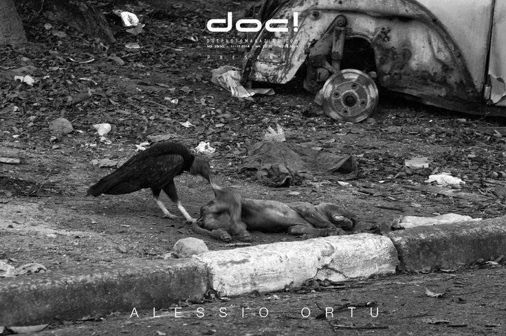 doc! photo magazine presents: Alessio Ortu - SIMULACRUM PRAECIPITII - THE VISION OF THE ABYSS @ doc! #29/30 (pp. 153-177)