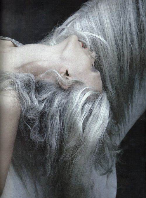 grey hair styles 33 best palette cotton images on pastel 6686