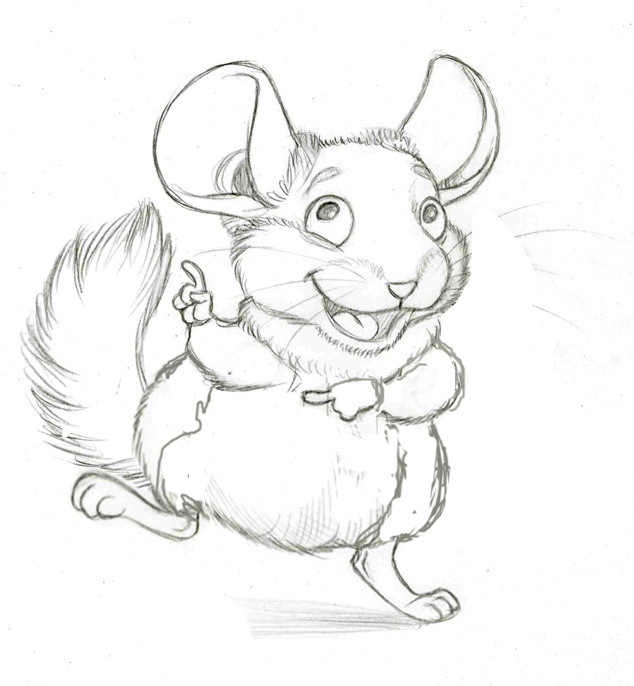 61 best chinchilla art images on pinterest chinchillas for Chinchilla coloring pages to print