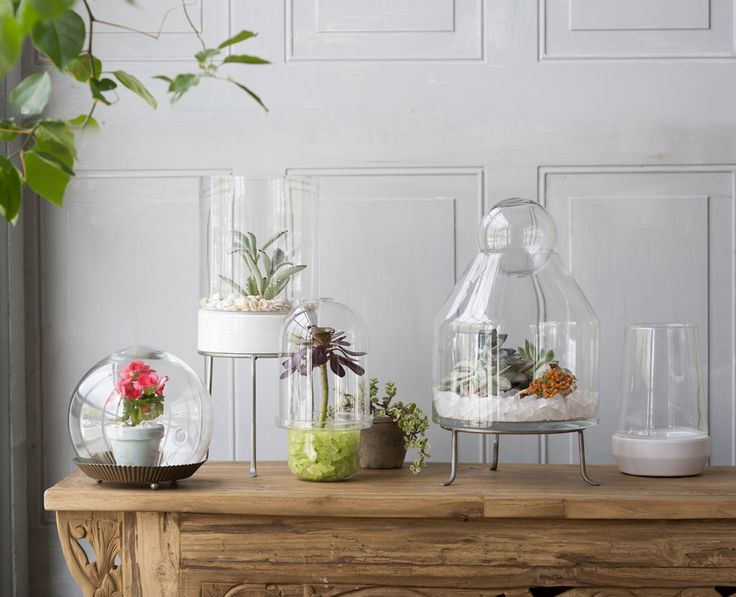 Vessels, toppers, misters and more: the terrarium shop is restocked.