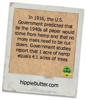 In 1916, the U.S. Government predicted that by the 1940s all paper would come from hemp and that no more trees need to be cut down. Government studies report that 1 acre of hemp equals 4.1 acres of trees