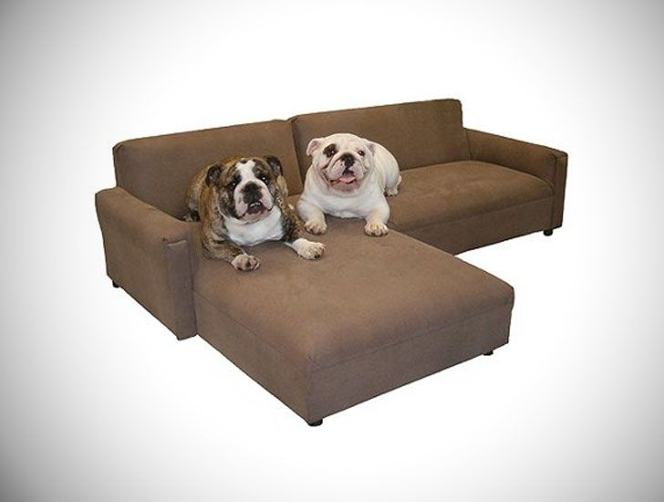 33 Coolest Most Unique Dog Beds For All Dogs Here We Have Some Of The Most Incredibly Unique Dog Beds You Can Buy Dog Couch Large Dog Couch Leather Dog Bed