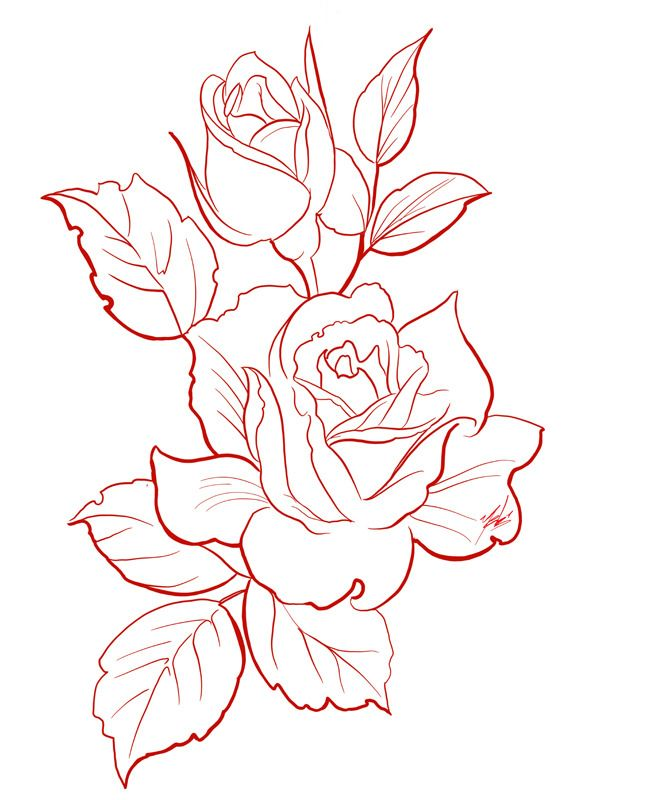 Y E B 1 Roses Drawing Flower Drawing Rose Drawing