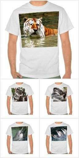 T-shirts based on photos of wildlife and places on the Gold Coast in Queensland, Australia.