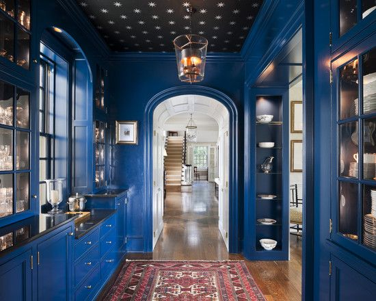 Ceiling WallpaperButler Pantries, Architecture Portfolio, Pantries Design, Blue Wall, Colors, Butler Pantry, Blue Kitchens, Ceilings, House