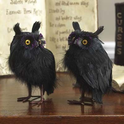 raz black feathered owls set of 2 assorted black owls set of 2 made of featherstyrofoam measures raz ghastly graveyard collection - Raz Halloween Decorations