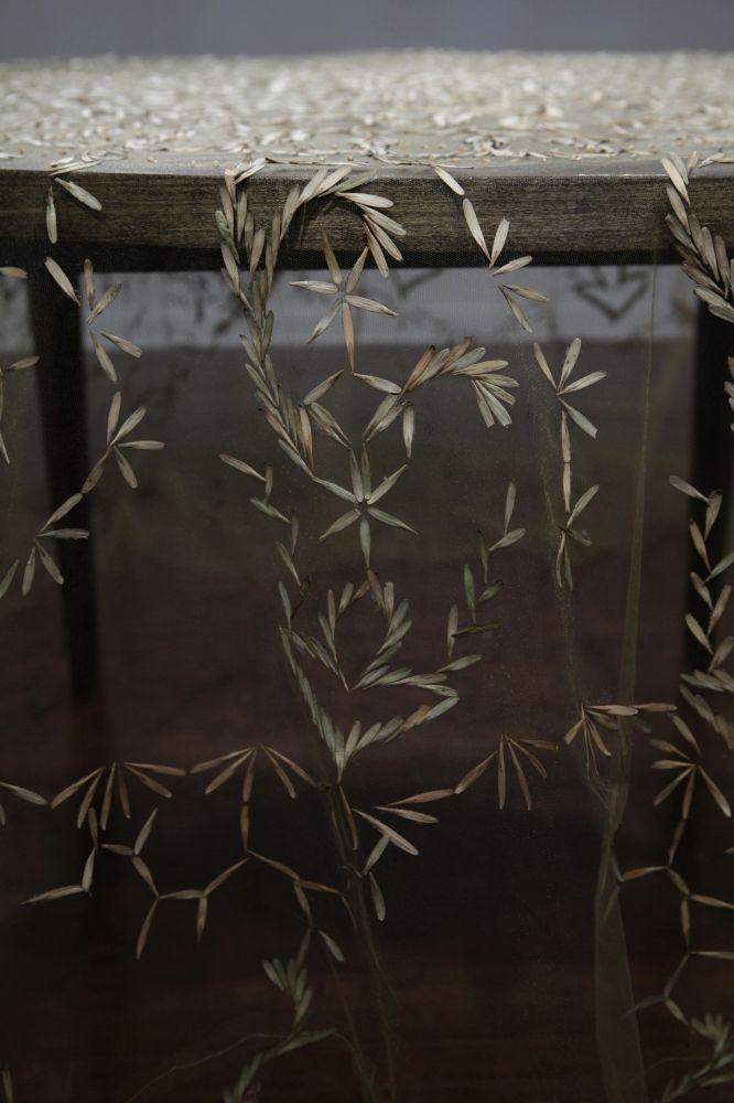 【種子桌巾,表現自然與人的關係】藝術作品使用自然中的物件,是現代藝術中可以見到的創作手法,其實仔細想來,在人類學會如何有效率、大量製作化學合成物之前,所有手邊使用、觀賞性質的東西都是以自然中的物件創造、製造的。  最近,藝術家Rena Detrixhe以種子創作了桌巾作品,旨在探討人與自然的關係。   以紗質的、幾乎透明的布料作為原料,Detrixhe一針一線手工將收集來的種子以蕾絲圖騰的樣式縫在上面,當鋪展開來時,整個空間像被種子的自然氣息所沾染、縈繞。   Detrixhe在接受訪問時談到,她自認為一個自然原料的「狩獵與採集者」,看待自然景物時,她所看到的是藝術本身,她希望藉由在藝術作品中結合自然產物,使得觀者的注意力從「人造的藝術」上回到「人類與自然」的角度,用更原始的方式審視原本就存在於世上的、非人造的美。
