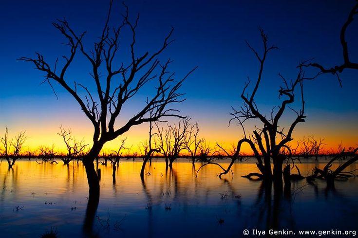 Sunset at The Lake Pamamaroo, Kinchega National Park, NSW, Australia.