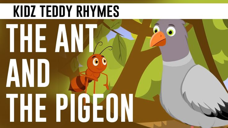 The Ant & The Pigeon - Aesop Fables