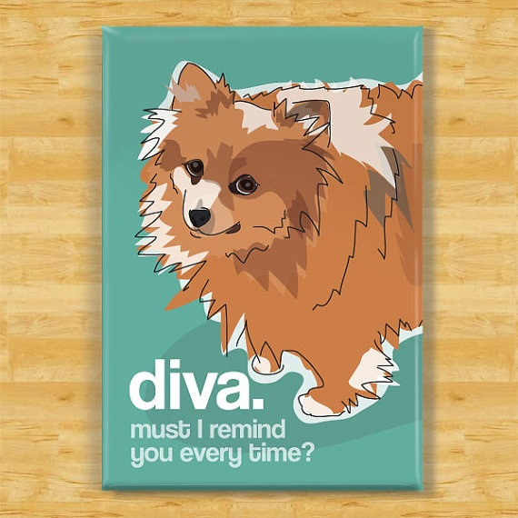 Pomeranian Dog Breed Magnet  Diva by Outsidepeg on Etsy - see, Poms are such divas!