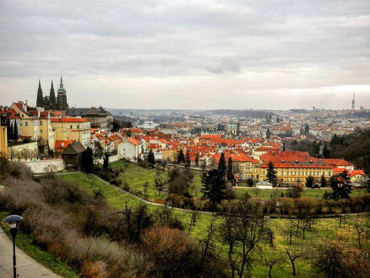 Pranoramę Pragi można podziwiać naprawdę z wielu ciekawych miejsc. Tutaj prezentuję widok na miasto z Hradczan gdzie u dołu zdjęcia widać winnice które w przeszłości otaczały całe miasto.   #Praga #Prague #Prag #Praha #CzechRepublic #view #panorama #March #cloudy #Hradcany #city #docelowoPraga