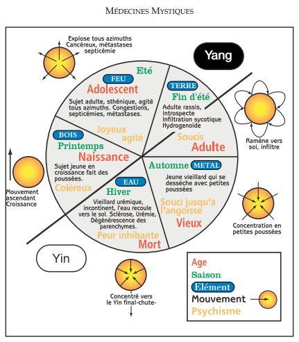 médecine mystique : Les Chinois ont classé tous les constituants visibles et invisibles de l'univers en cinq classes plus ou moins yang ou yin qui entretiennent entre elles un commerce très actif codifié par des règles de mouvement très précises. Les cinq éléments chefs de file sont donc : le Bois, le Feu, la Terre, l'Air et l'Eau.