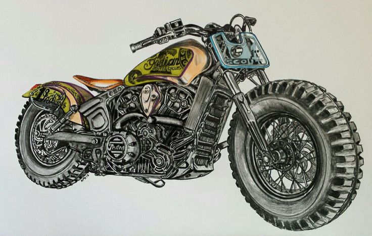 Coloured pencil scout.......26 hours (With images