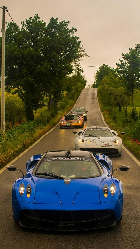 One One Of The Annual Pagani Meets. Special Cars Are Special.