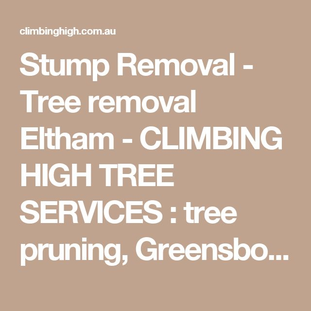 Stump Removal - Tree removal Eltham - CLIMBING HIGH TREE SERVICES : tree pruning, Greensborough, Diamond Creek, Montmorency, stump removal, arborist, tree loppingTree removal Eltham – CLIMBING HIGH TREE SERVICES : tree pruning, Greensborough, Diamond Creek, Montmorency, stump removal, arborist, tree lopping
