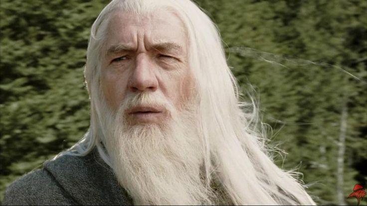Ian McKellen ha rifiutato di celebrare un matrimonio nelle vesti di Gandalf