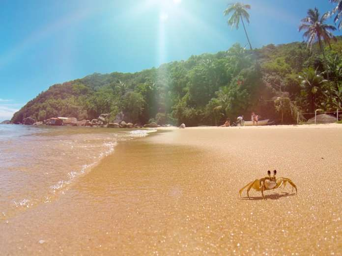 25 best Best Islands Beach/Snorkeling And Swimming images on ...