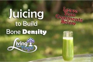 How to Build Bone Density: Juicing Smoothie, Juicing Recipes, Juice Veggies, Juice Recipe, Bones Strength, Bones Density, How To, Healthy Juice, Building Bones