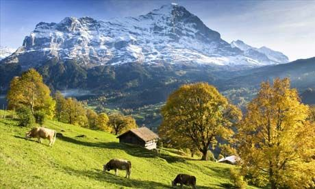 Jungfrau, Switzerland.  My first view of the Alps, thirty some years ago is still my favorite.  The Swiss valley and the tremendous peaks, outstanding.