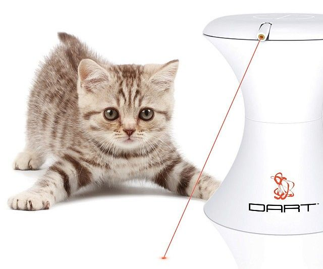Entertain your energetic cat for hours with this automatic moving cat laser toy. The laser will move around in various directions, which for some cats, and even some dogs, will be irresistible to chase. The laser toy is especially effective for playful kittens.