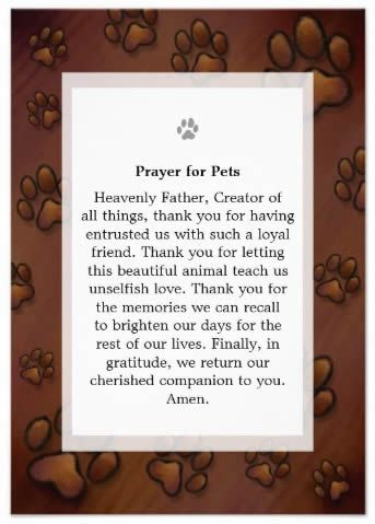 image sympathy dog cards - Google Search